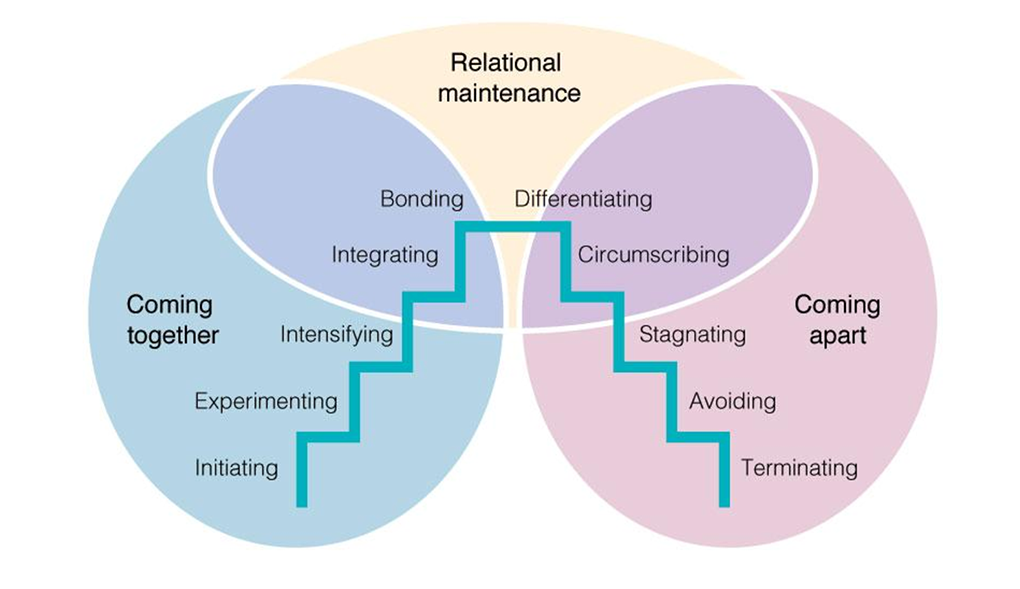 Knapp's Stages of Relational Development
